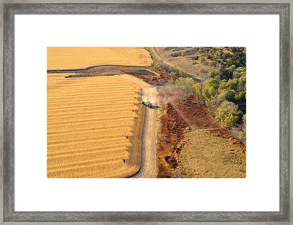 Many Acres To Harvest Framed Print