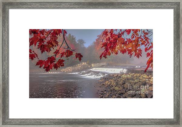 Maple Leaf Frame Ws Framed Print