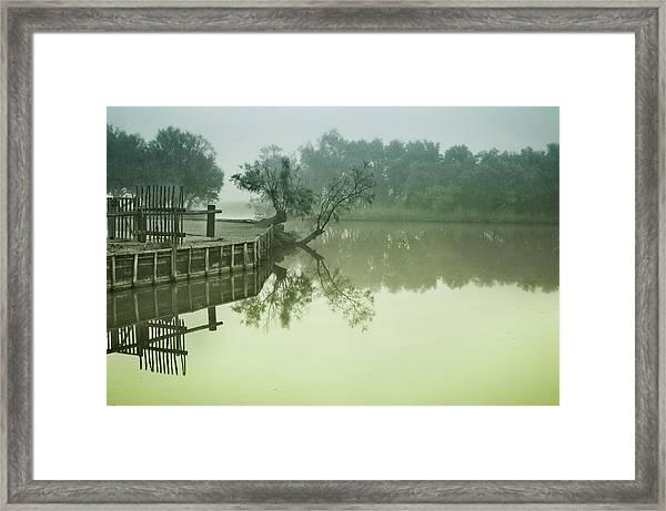 Marais At Dawn, Camargue, France Framed Print