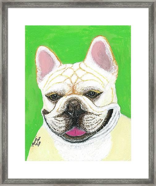 Marcel French Bulldog Framed Print