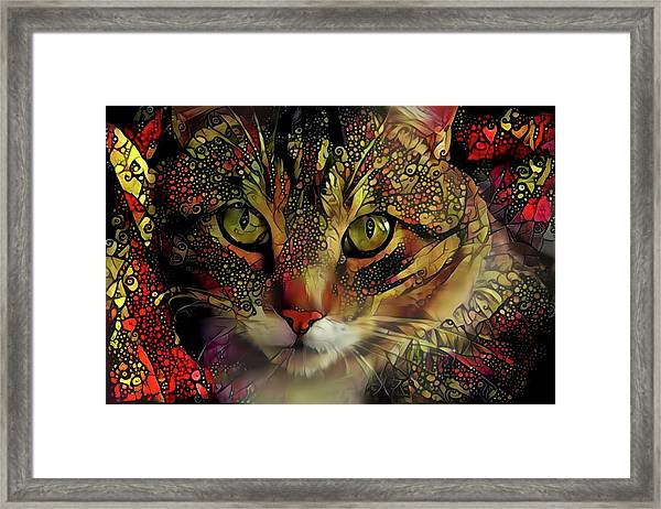 Marmalade In The Morning Framed Print