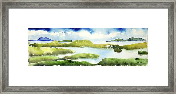Marshes Framed Print