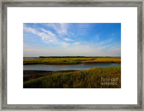 Marshland Charleston South Carolina Framed Print