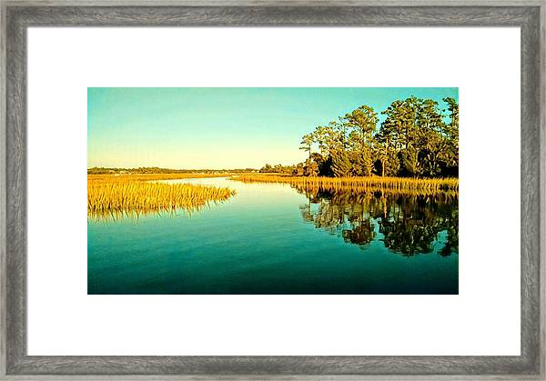 Marvelous Marsh Framed Print