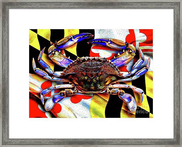 Maryland Blue Crab Framed Print
