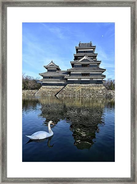 Matsumoto Swan Framed Print