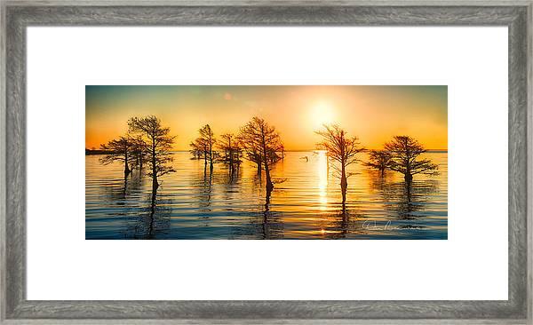 Mattamuskeet Sunrise 9103 Framed Print
