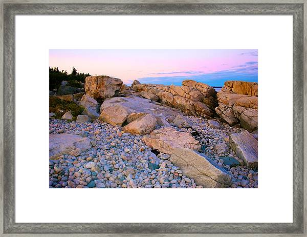 Mauve Light On Schoodic Penninsula Framed Print