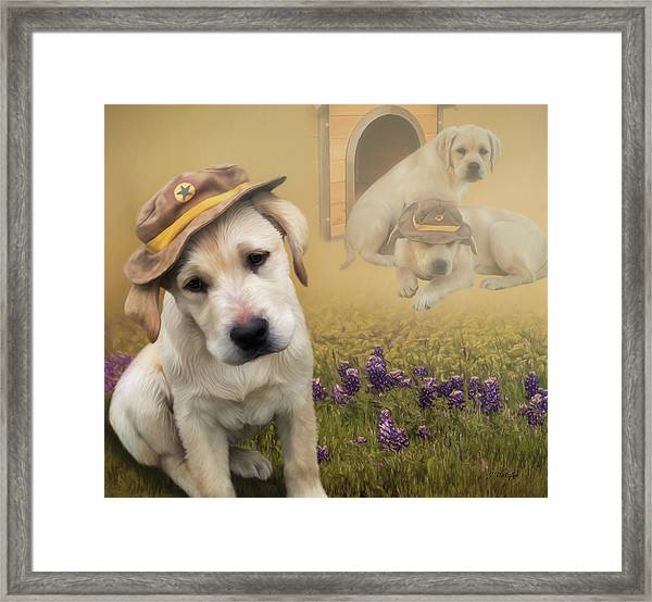 Maverick And Tori - Labrador Art Framed Print