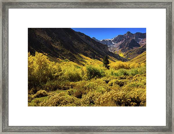 Mcgee Creek Alive With Color Framed Print
