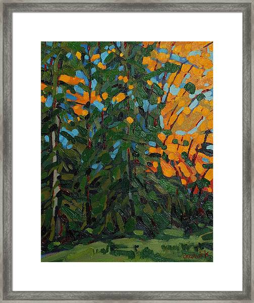Mcmichael Forest Wall Framed Print