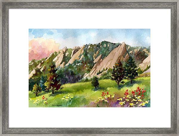 Meadow At Chautauqua Framed Print