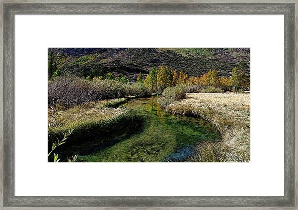 Meadow Creek Framed Print