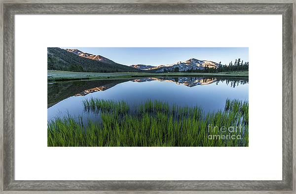 Meadow Reflections  Framed Print