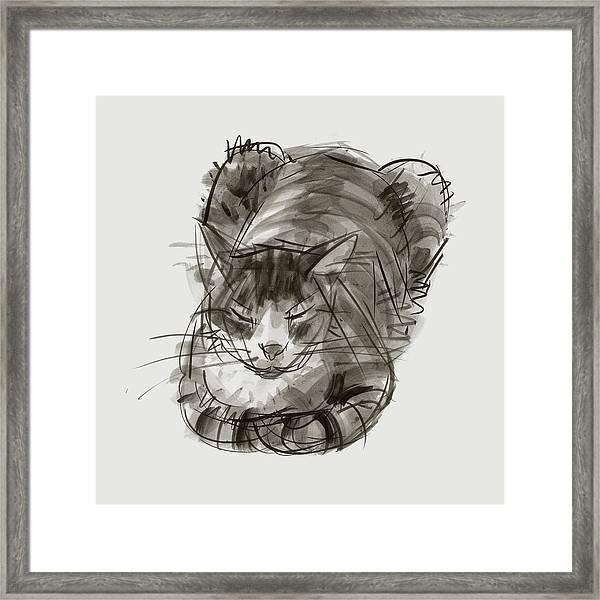 Meditating Cat Framed Print
