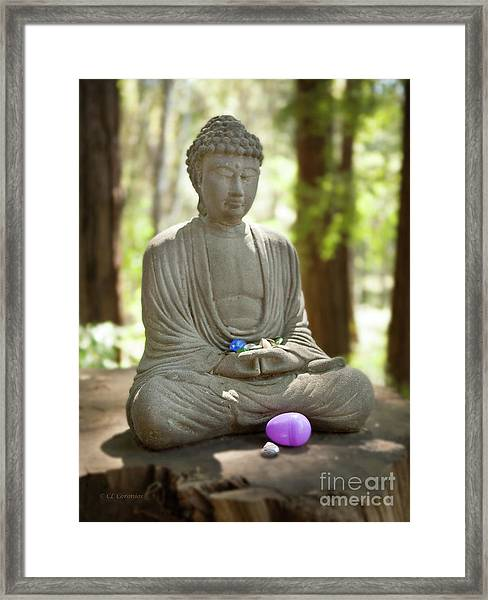 Meditation Buddha With Offerings Framed Print