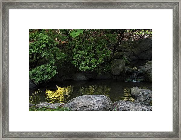 Meditation Pond Framed Print
