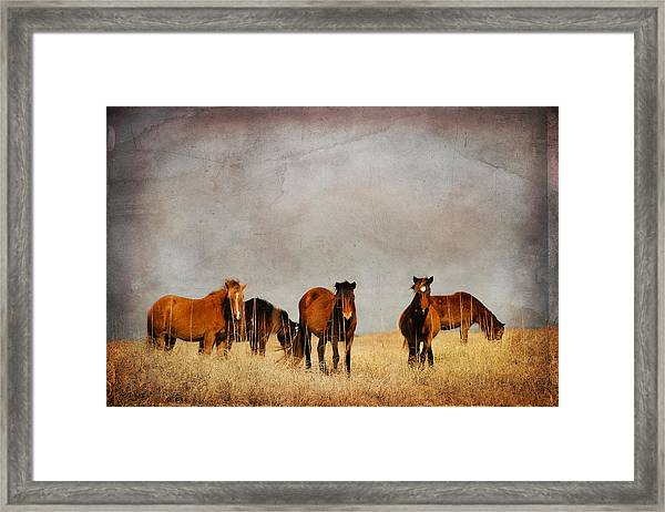 Meeting Framed Print