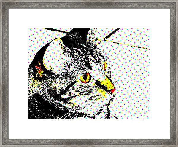 Melvin In Dots Framed Print