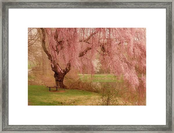 Memories - Holmdel Park Framed Print