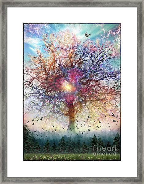Memory Of A Tree Framed Print