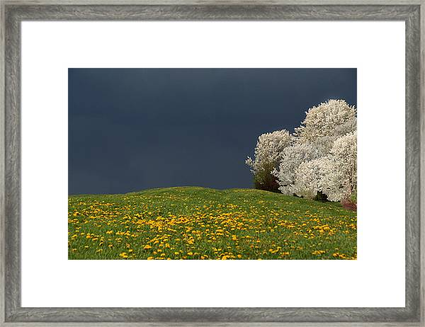 Men Get Angry  Nature Acts Framed Print