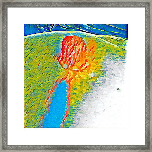 Mermaid Dives In Framed Print