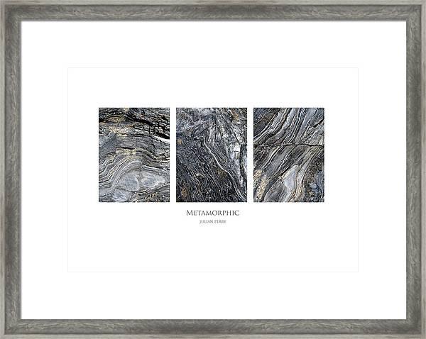 Metamorphic Framed Print