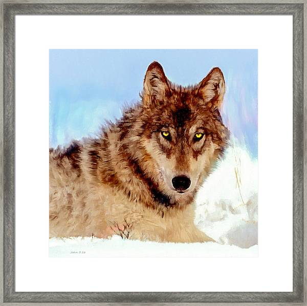 Mexican Wolf Painting Framed Print