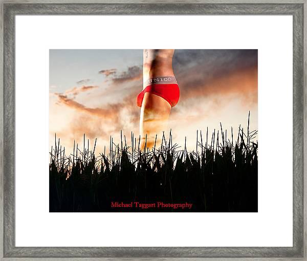 Michael Phelps Sunset Framed Print