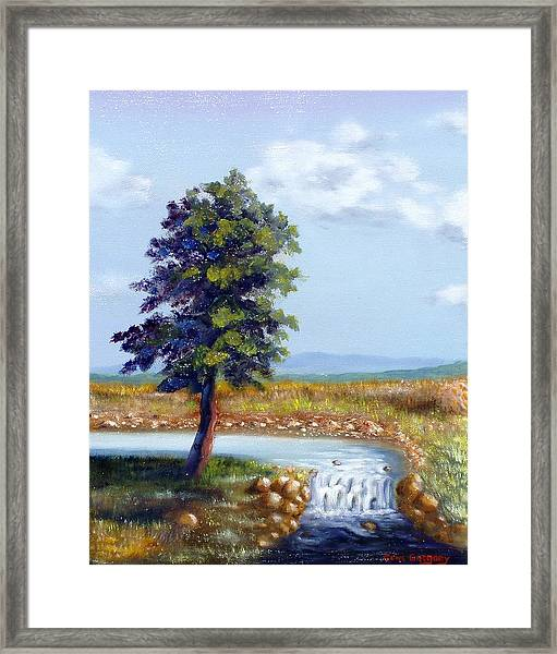 Michaels Waterfall Framed Print
