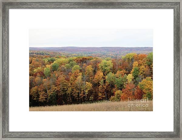 Michigan Autumn Framed Print