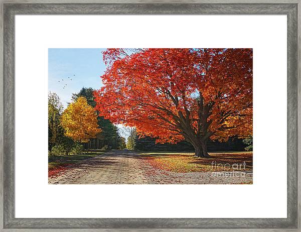Michigan Spellbound Framed Print