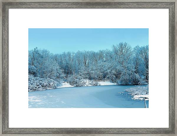 Michigan Winter 6 Framed Print