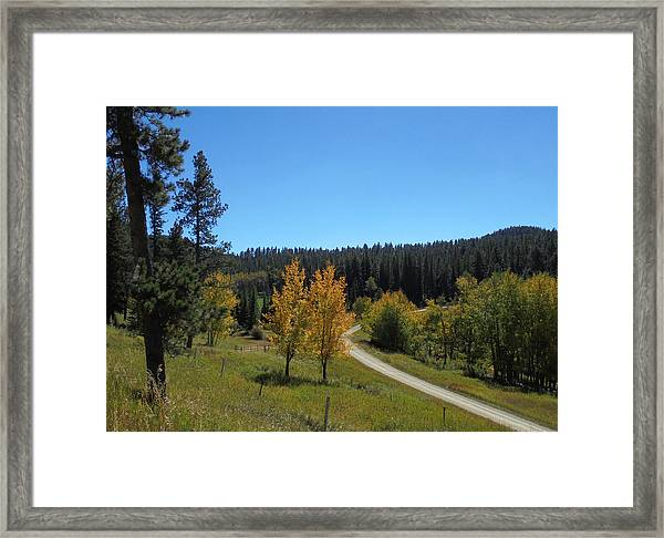 Mickelson Trail Framed Print