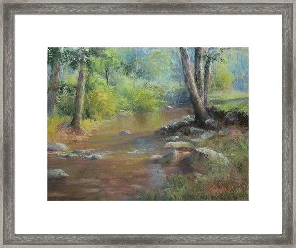 Midsummer Day's Stream Framed Print