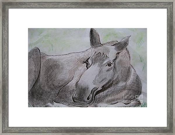 Mildred The Moose Resting Framed Print