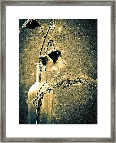 Milk Weed And Hay Framed Print