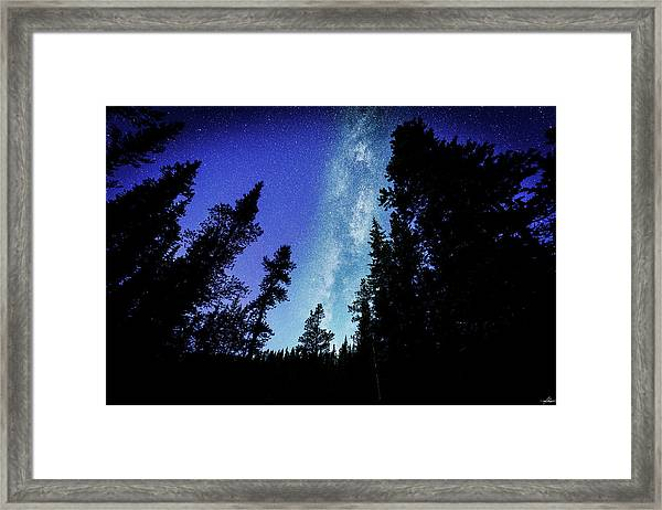 Milky Way Among The Trees Framed Print
