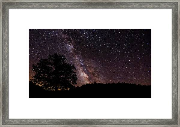 Milky Way And The Tree Framed Print