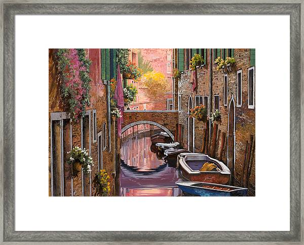 Mimosa Sui Canali Framed Print