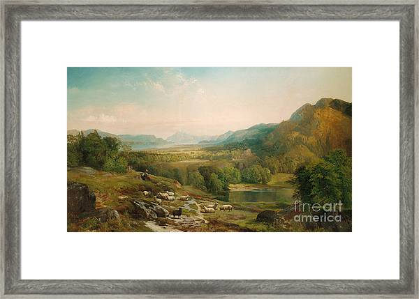 Minding The Flock Framed Print