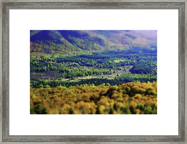 Mini Meadow Framed Print