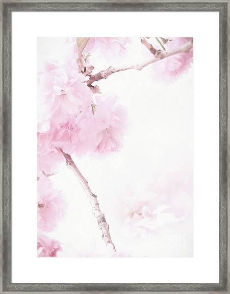 Minimalist Cherry Blossoms Framed Print