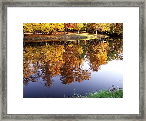 Mining For Gold Framed Print