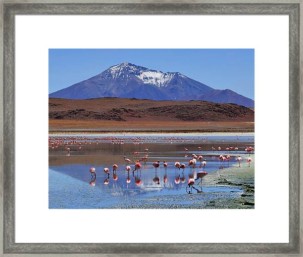 Framed Print featuring the photograph Mirage by Skip Hunt