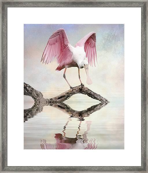 Mirror, Mirror,  Framed Print