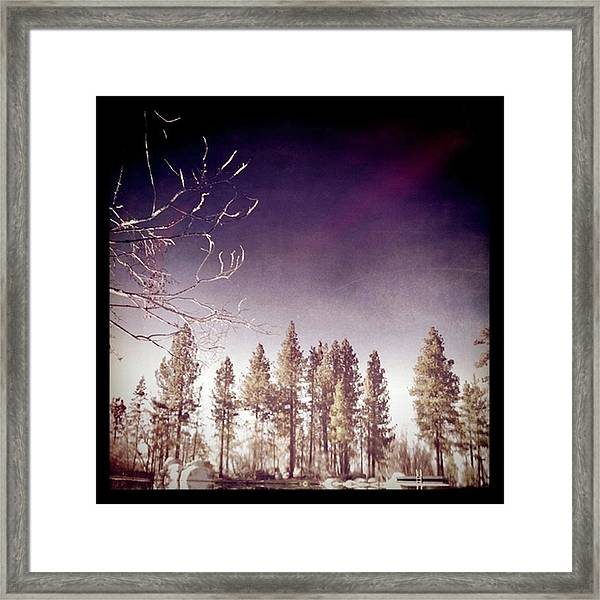 Mirrored On The Lake Framed Print