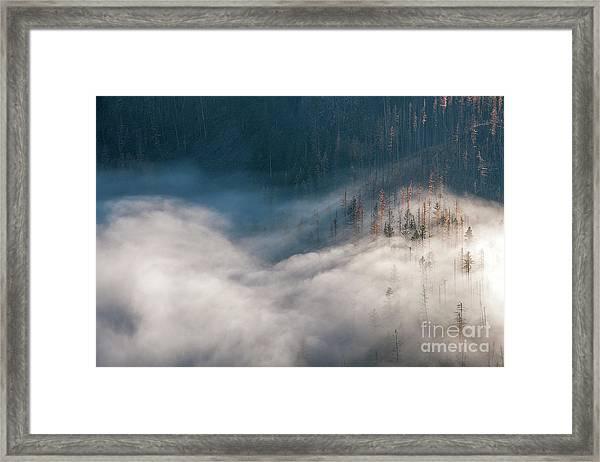 Mist And Shadow Framed Print