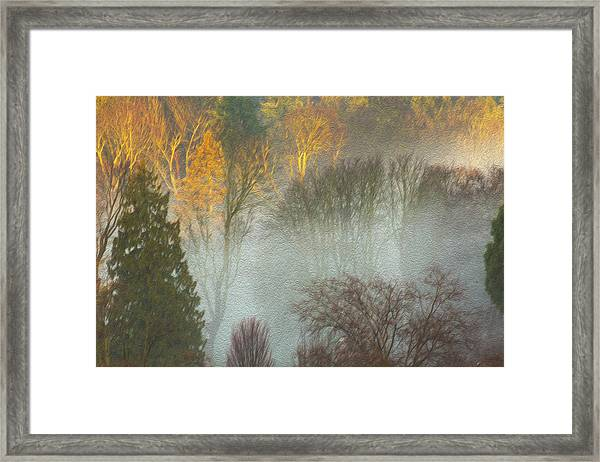 Mist In The Park Framed Print